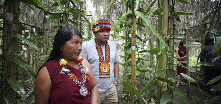 La Federación Regional Indígena Awajún del Alto Mayo- FERIAAM, se pronuncia contra las autoridades del sector Salud