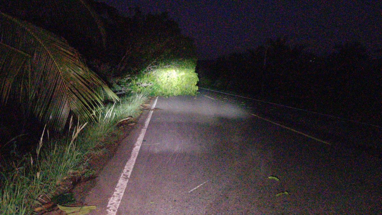 Fuertes vientos ayer en horas de la tarde, interrumpió el servicio de energía eléctrica en algunos sectores de la provincia de San Martín y Lamas