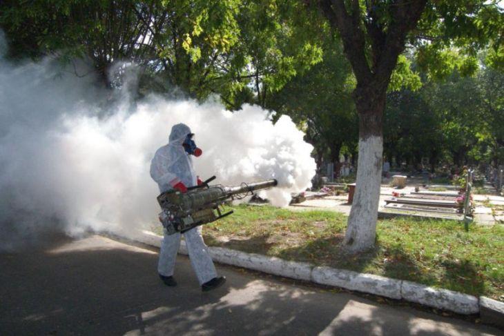 Campaña nacional de prevención y control del dengue se lanzará hoy desde Tarapoto