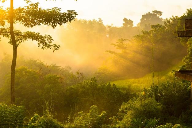 Senamhi anuncia incremento de temperaturas en la selva, entre el martes y miércoles de esta semana