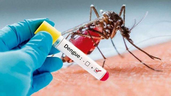 Morales: Siguen detectándose casos de dengue