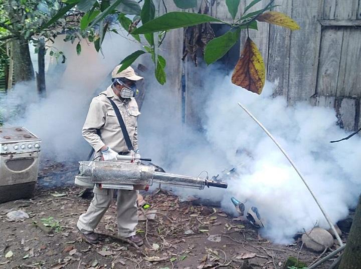 Sector salud realizará campaña de fumigación contra el dengue el próximo mes de octubre