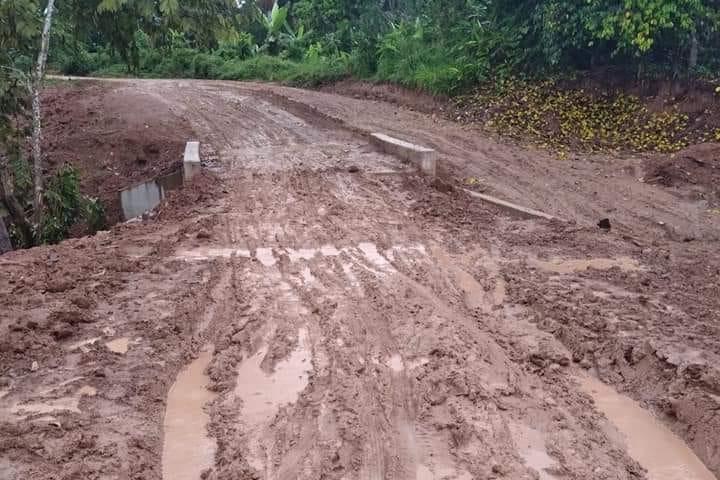 Pobladores de la localidad Naranjal de Lamas exigen rehabilitación de carretera