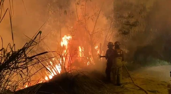 Tarapoto: Otro incendio forestal se registró anoche en el sector Tarapotillo