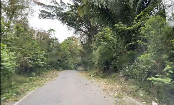 Municipalidades de San Antonio, Morales, la Asociación de Agrónomos y Radio Tropical, suscribirán convenio para hacer realidad reforestación y arborización del tramo entre ambos distritos