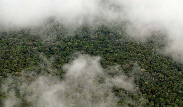 Senamhi informa que se registrará lluvia de moderada a fuerte intensidad entre el viernes 10 hasta el sábado 11